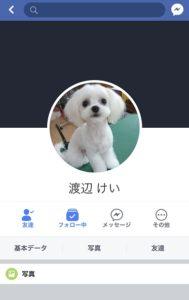 facebook渡辺けい