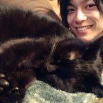 コウスケと猫