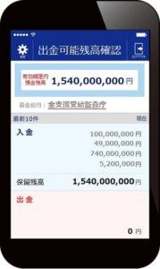 中島美玖(なかじま みく)15億4千万円