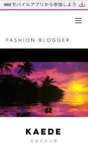 FASHION BLOGGER(ファッションブロガー)